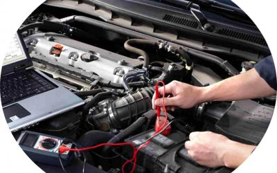 Automobile Repair, Services, and Parking Industry Executives List